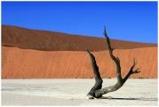 Ded Vlei en Namibia